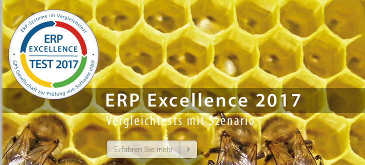 ERP Excellence 2017
